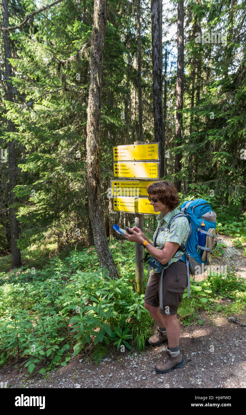 Female hiker at signpost in forest reads map on GPS device, Schladming Tauern, Schladming, Styria, Austria - Stock Image