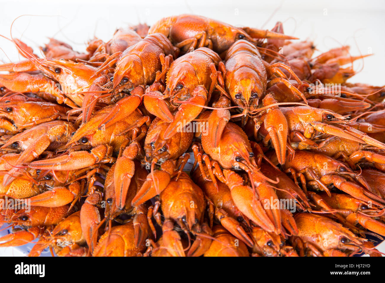 Photo of red boiled crawfishes on the dish - Stock Image