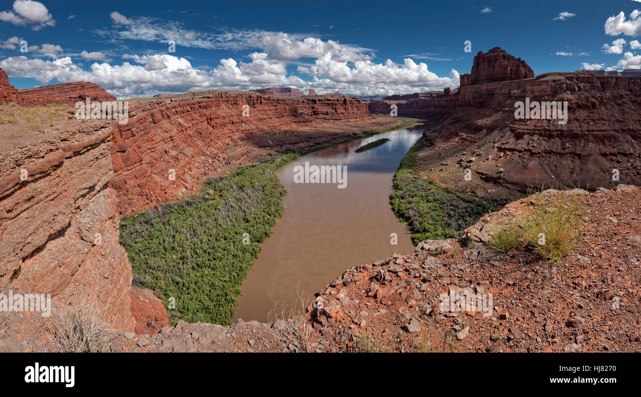 The Colorado River, Southern Utah - Stock Image