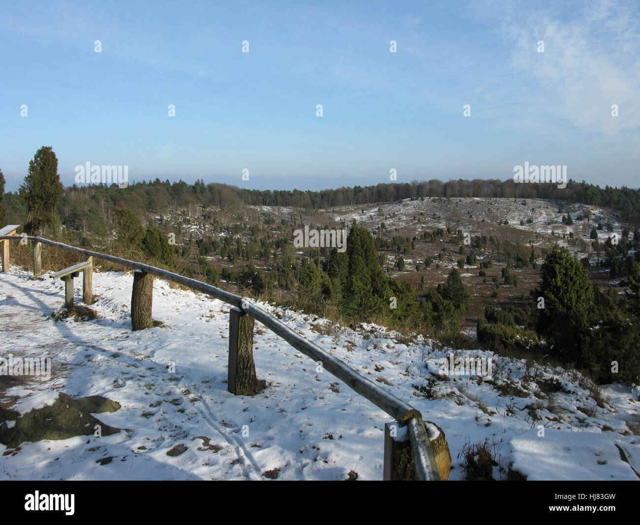 travel, tree, winter, tourism, field, hike, go hiking, ramble, conservation of Stock Photo