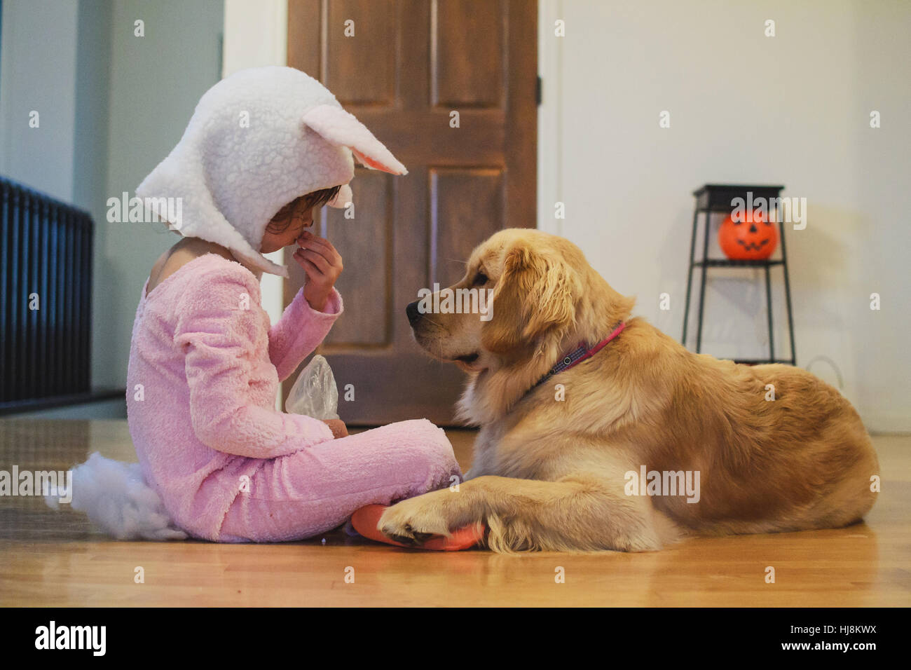 girl in bunny costume sharing halloween candy with golden retriever dog