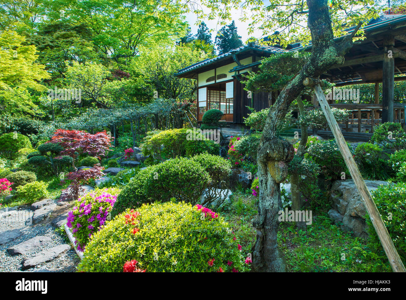 A traditional Japanese tea garden and house, chashitsu, near Tokyo in Japan - Stock Image