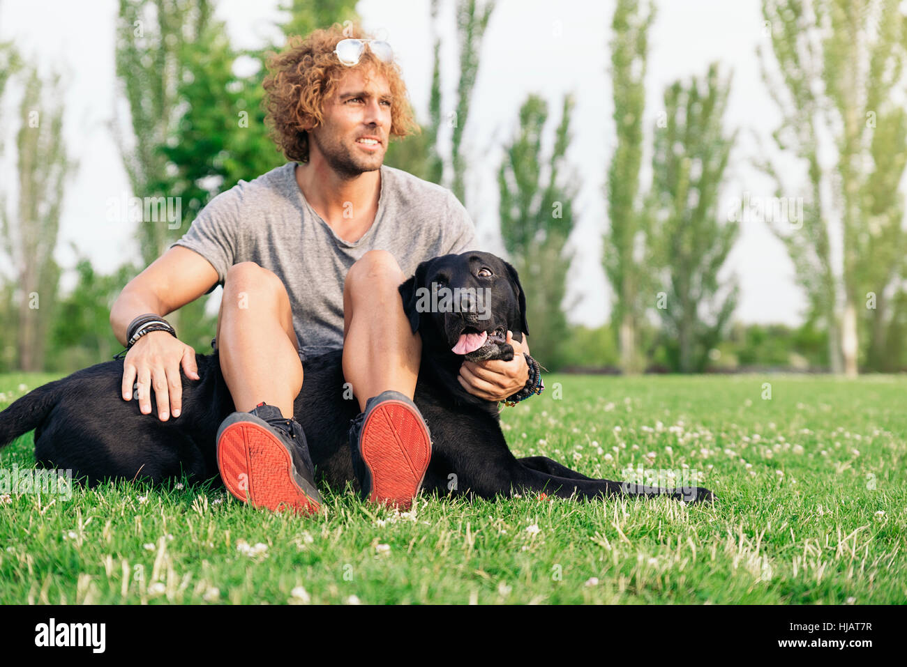 Man having fun and playing with his dog in the park. - Stock Image