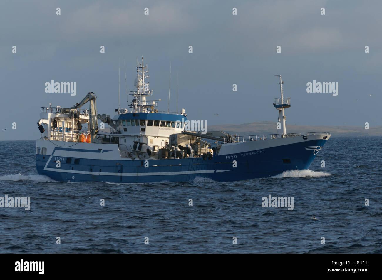 "Fraserburgh pelagic trawler ""Forever Grateful"" fishing for mackerel in Saint Magnus Bay on the west coast of Shetland. - Stock Image"