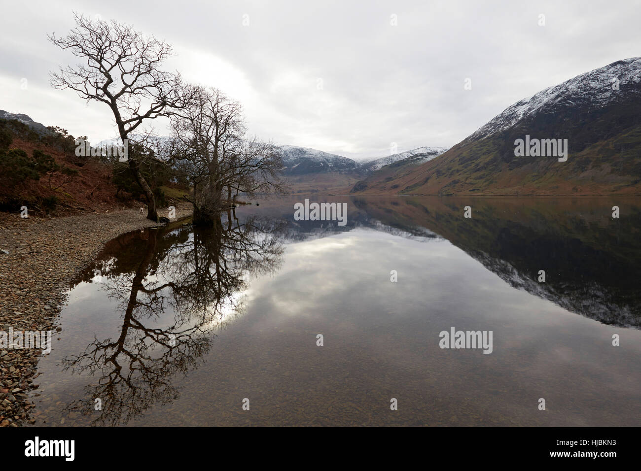 Snow capped mountains rocks and trees reflected in the calm surface of Crummock Water, Keswick, Cumbria, Lake District, - Stock Image