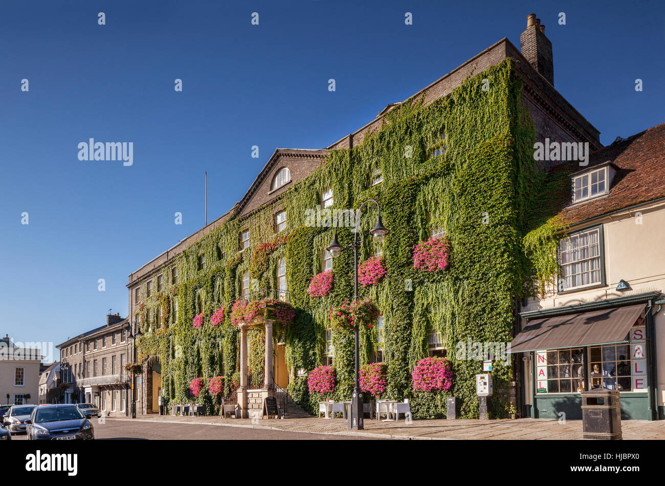 Angek Hotel, Market Square, Bury St Edmunds, Cambridgeshire, England, covered in Virginia Creeper. - Stock Image