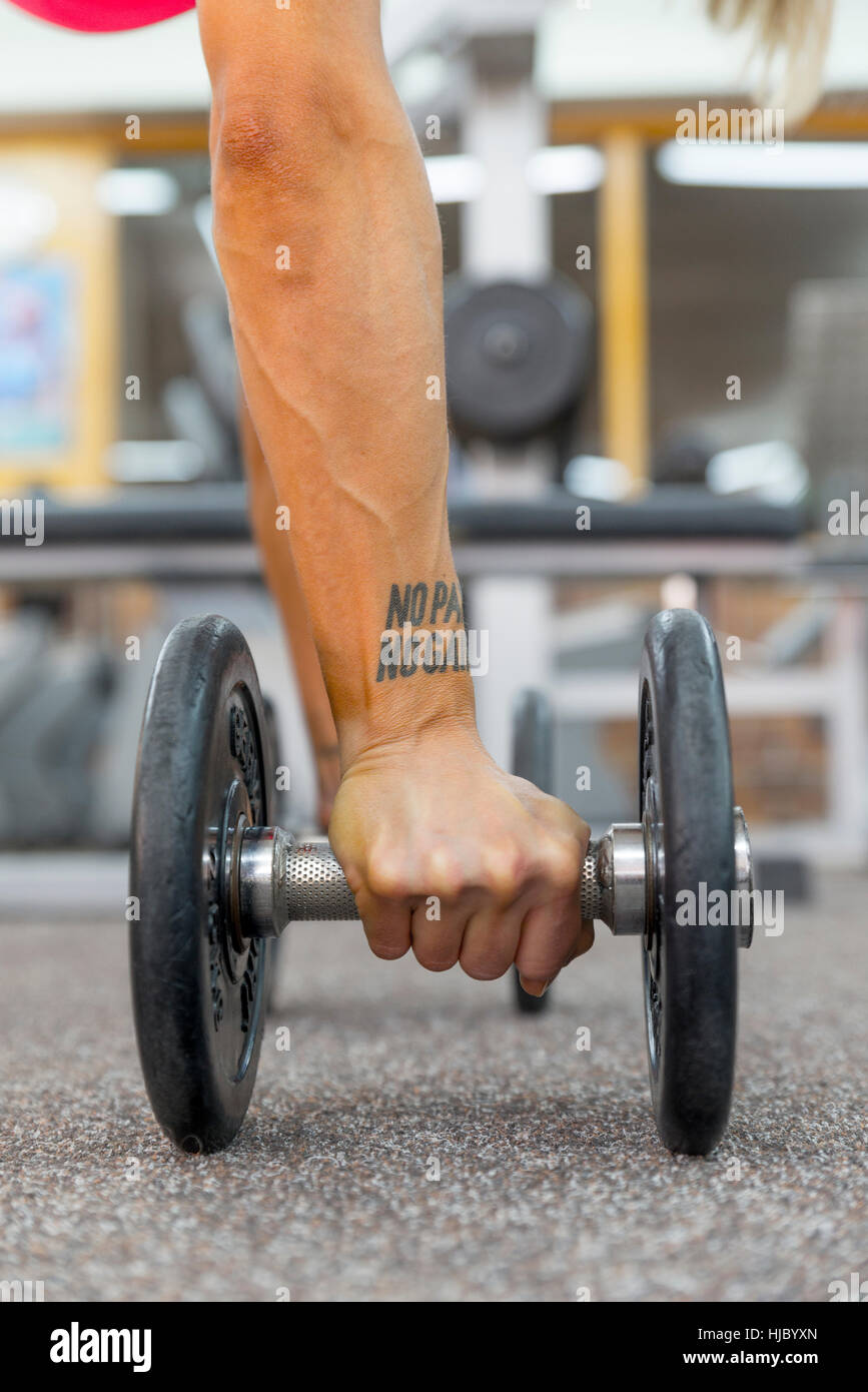Hand Woman With A Dumbell On The Gyms Floorno Pain No Gain Tattoo