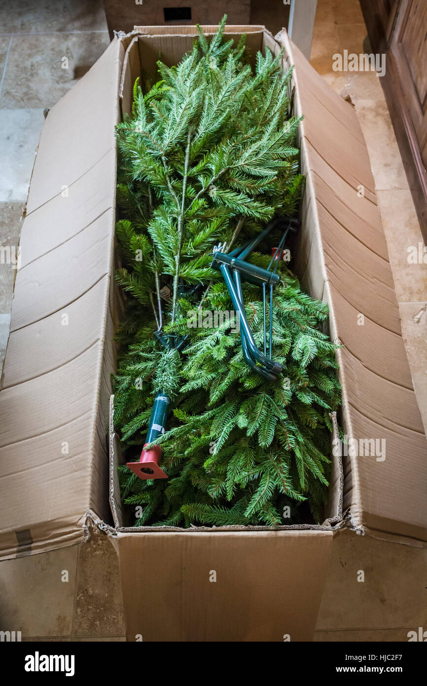Artificial Christmas Tree Box.Artificial Christmas Tree Packed Away In A Cardboard Box