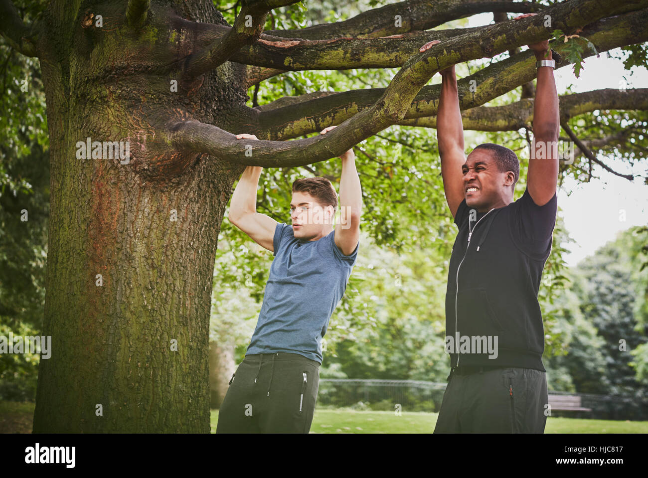 Personal trainer and young man doing pull ups using park tree branch - Stock Image