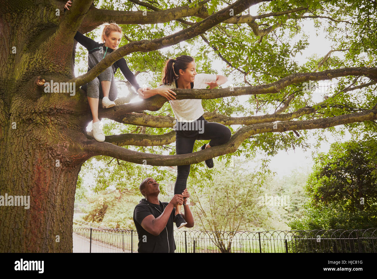 Personal trainer giving woman helping hand to climb park tree - Stock Image