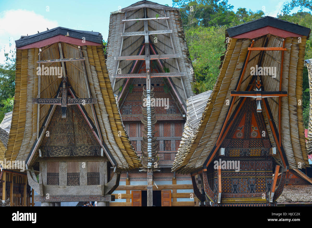 Tongkonan traditional houses in Tana Toraja, Sulawesi, Indonesia - Stock Image