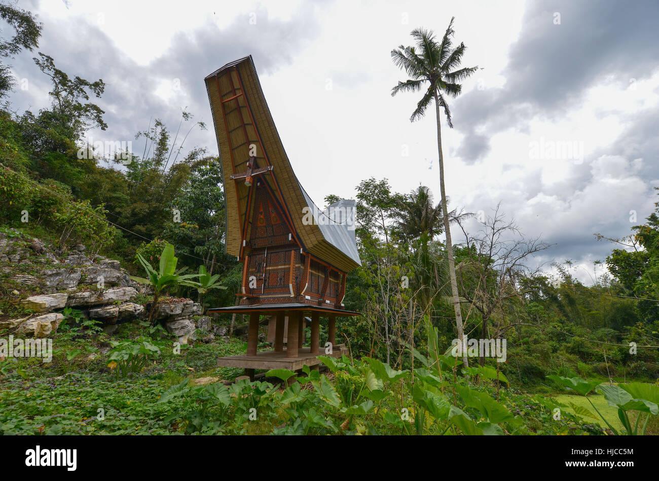 Tongkonan traditional houses in Tana Toraja, Sulawesi, Indonesia - Stock Image