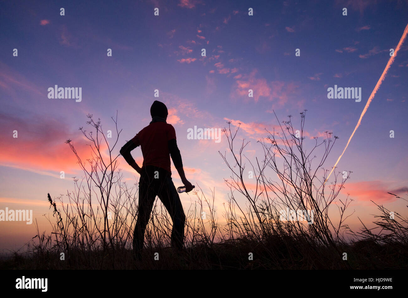 Billingham, UK. 24th Jan, 2017. Weather: Jogger at sunrise on a clear and frosty morning in Cowpen Bewley Woodland - Stock Image
