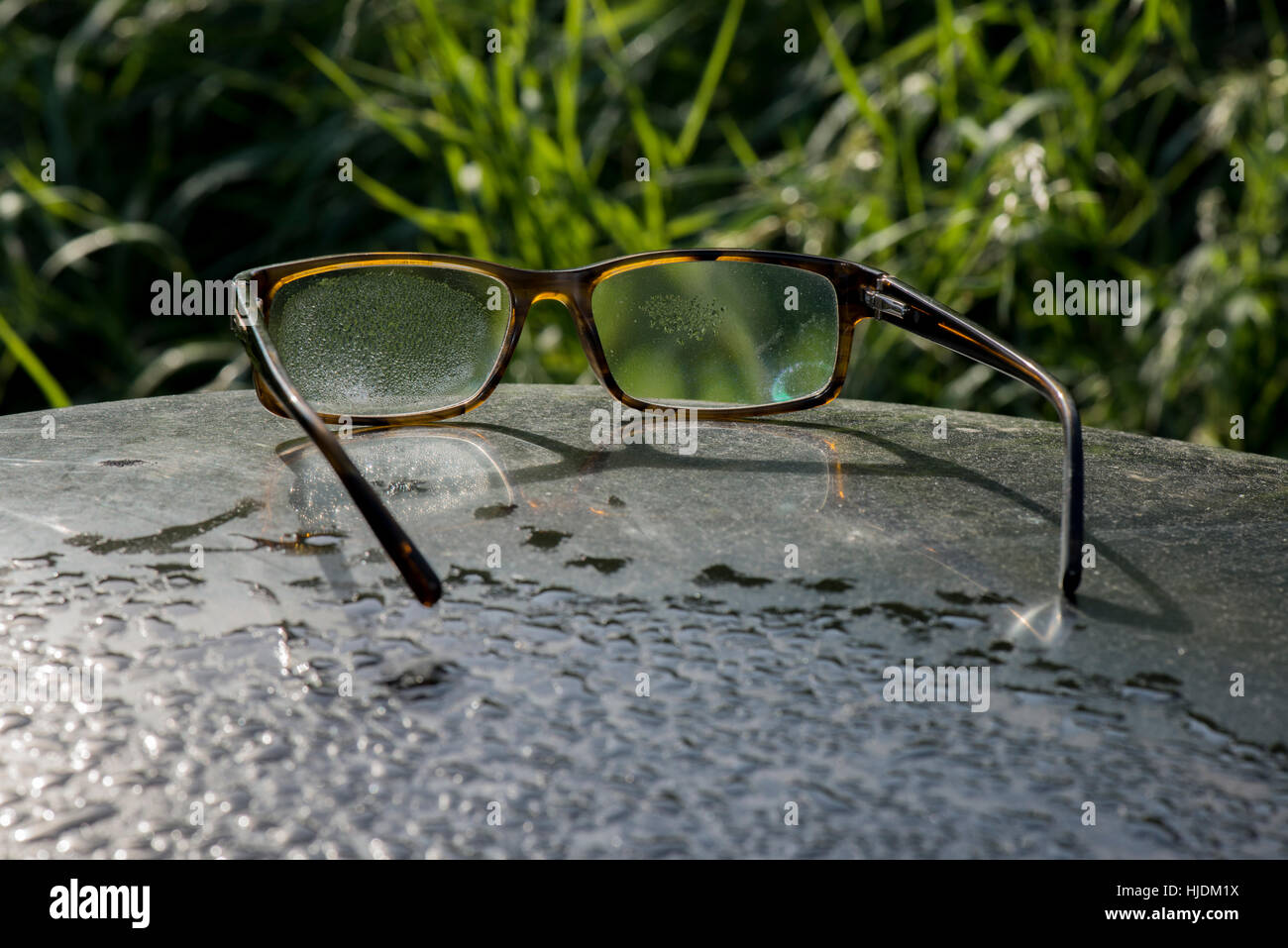 A pair of glasses covered in morning dew and  left behind by a visitor to the Wilstone Reservoir Nature Reserve, - Stock Image