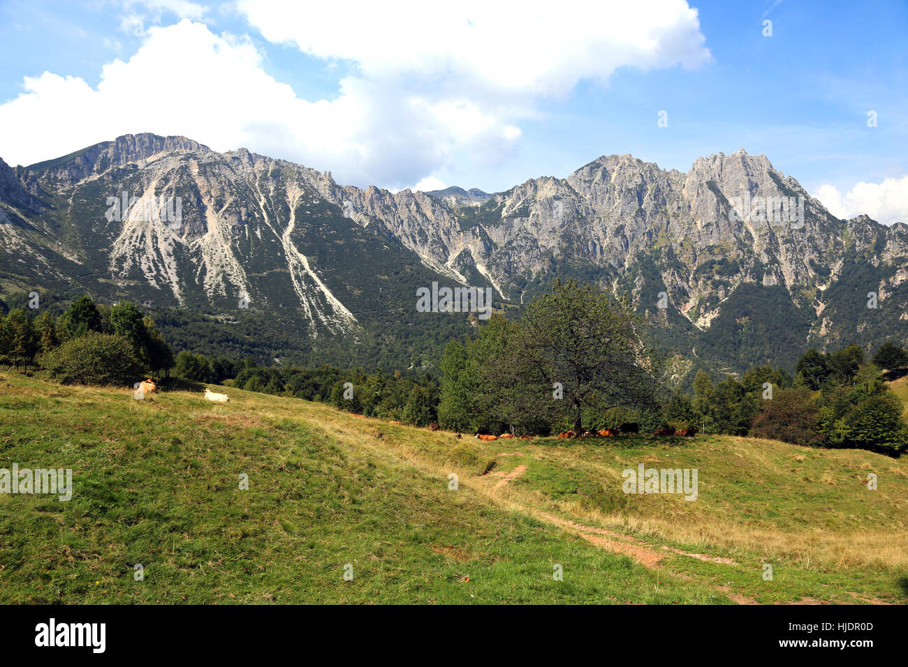 landscape of italian mountains called Venetian Prealps in the province of Vicenza in Italy - Stock Image