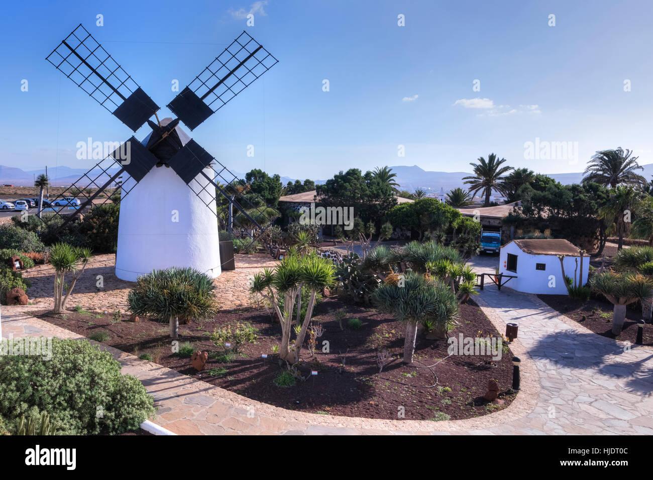 Molino de Antigua, Antigua, Fuerteventura, Canary Islands, Spain - Stock Image