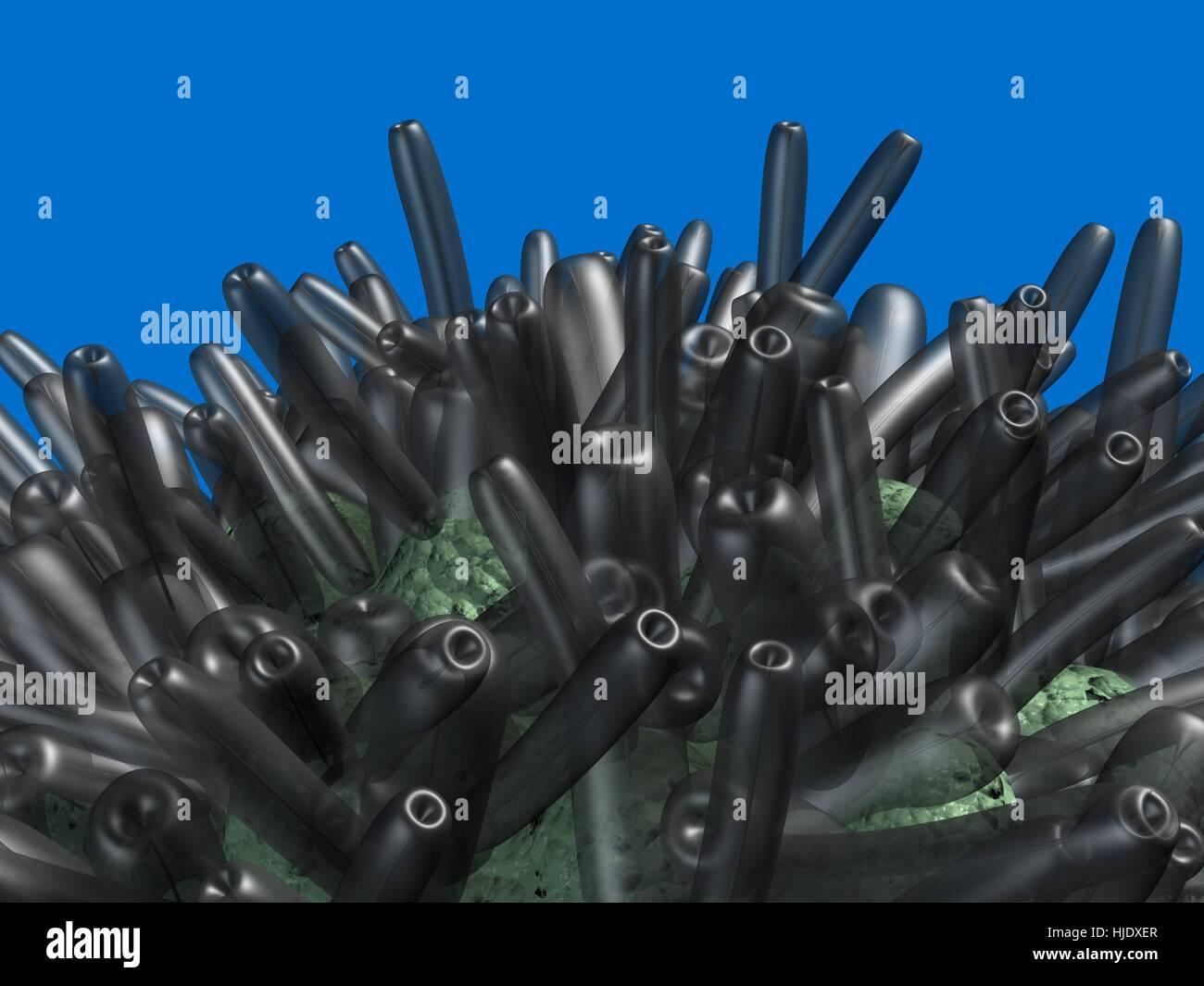 Microbe, bacteria, parasite, pathogen, cell . 3d rendering Stock Photo