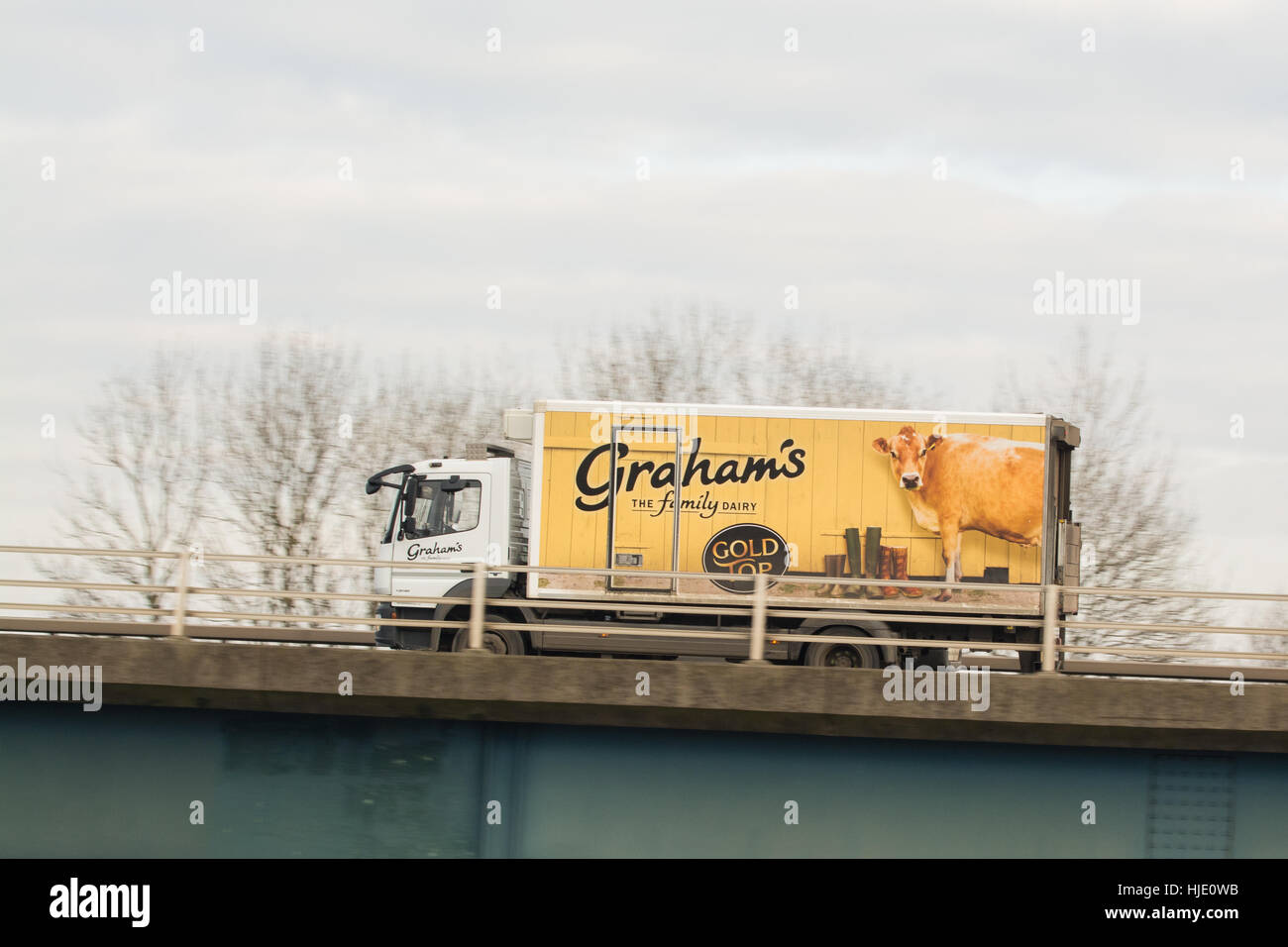 Graham's dairy delivery lorry with Gold Top advertising - Scotland, UK - Stock Image
