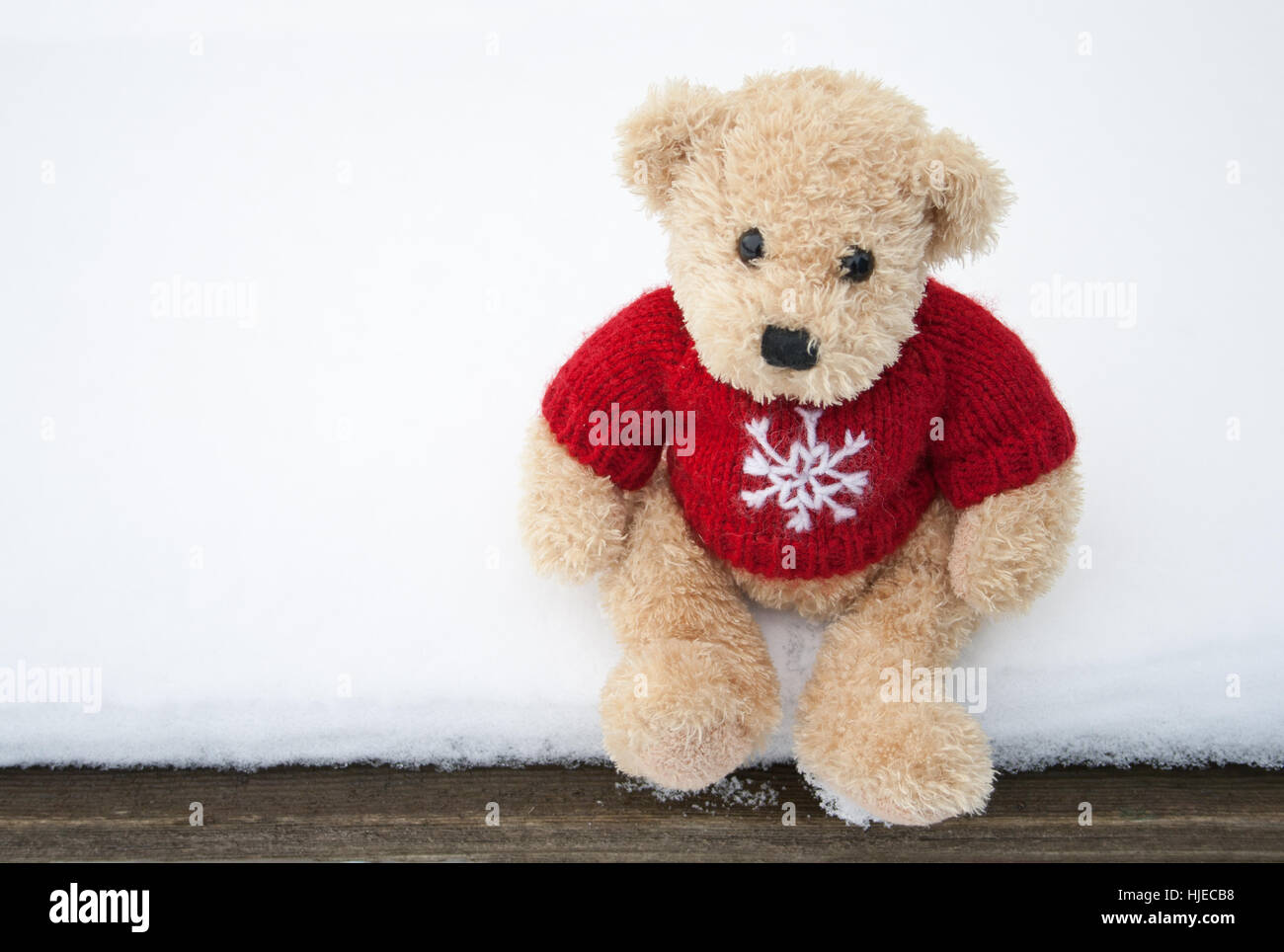 Winter bear cold wool small tiny little short toy frost winter bear cold wool small tiny little short toy frost teddy teddy altavistaventures Choice Image