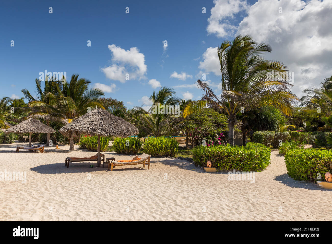 Sandy beach with sunshades with straw roof and sunbeds blue sky, palms in the background, hotel resort, sunny day - Stock Image