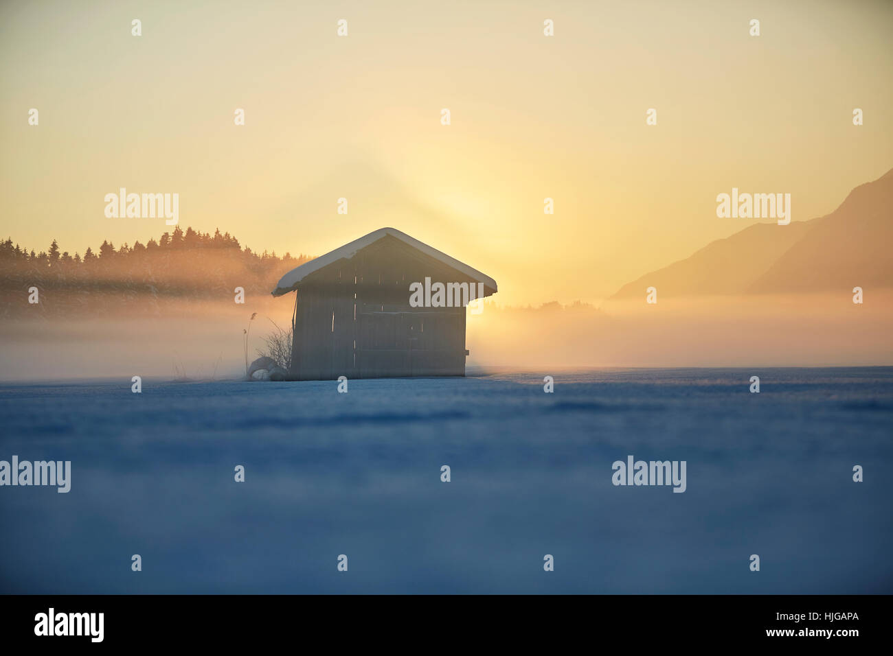 Small cabin, winter landscape, hay barn in fog at dusk, Kramsach, Tyrol, Austria - Stock Image