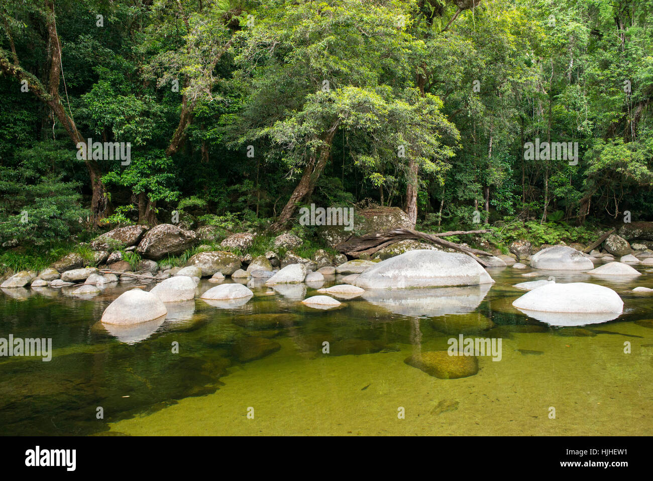Mossman Gorge, Queensland Australia - Stock Image