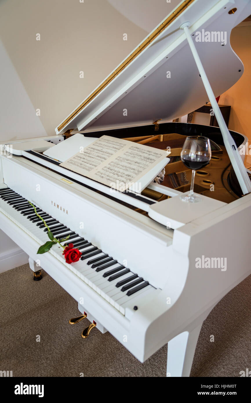 White grand piano with a red rose on the keyboard a glass ...