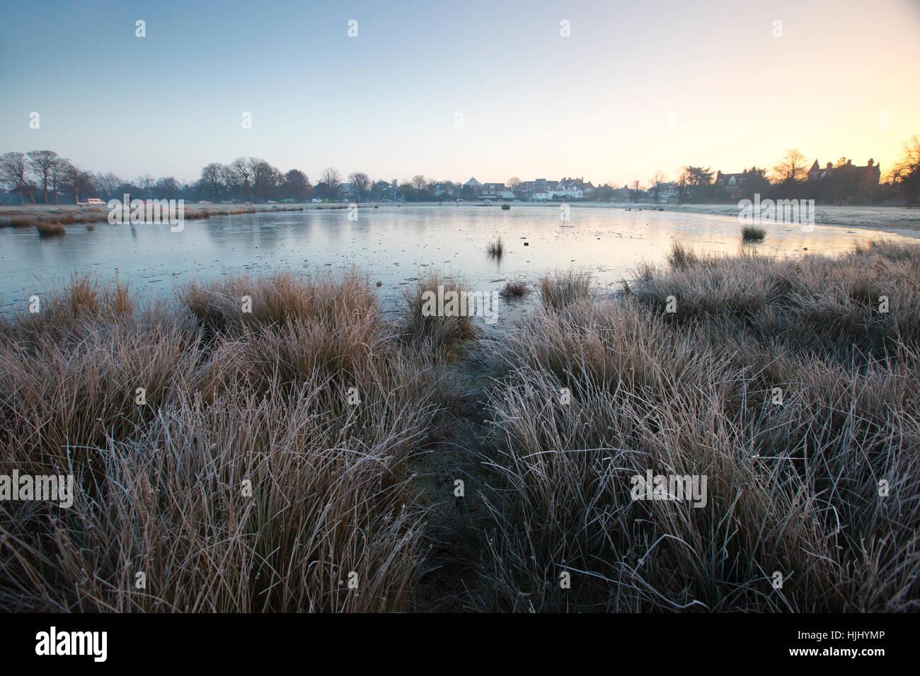 Early morning freezing temperatures at Rushmore Pond, Wimbledon Common, Southwest London, England, UK - Stock Image