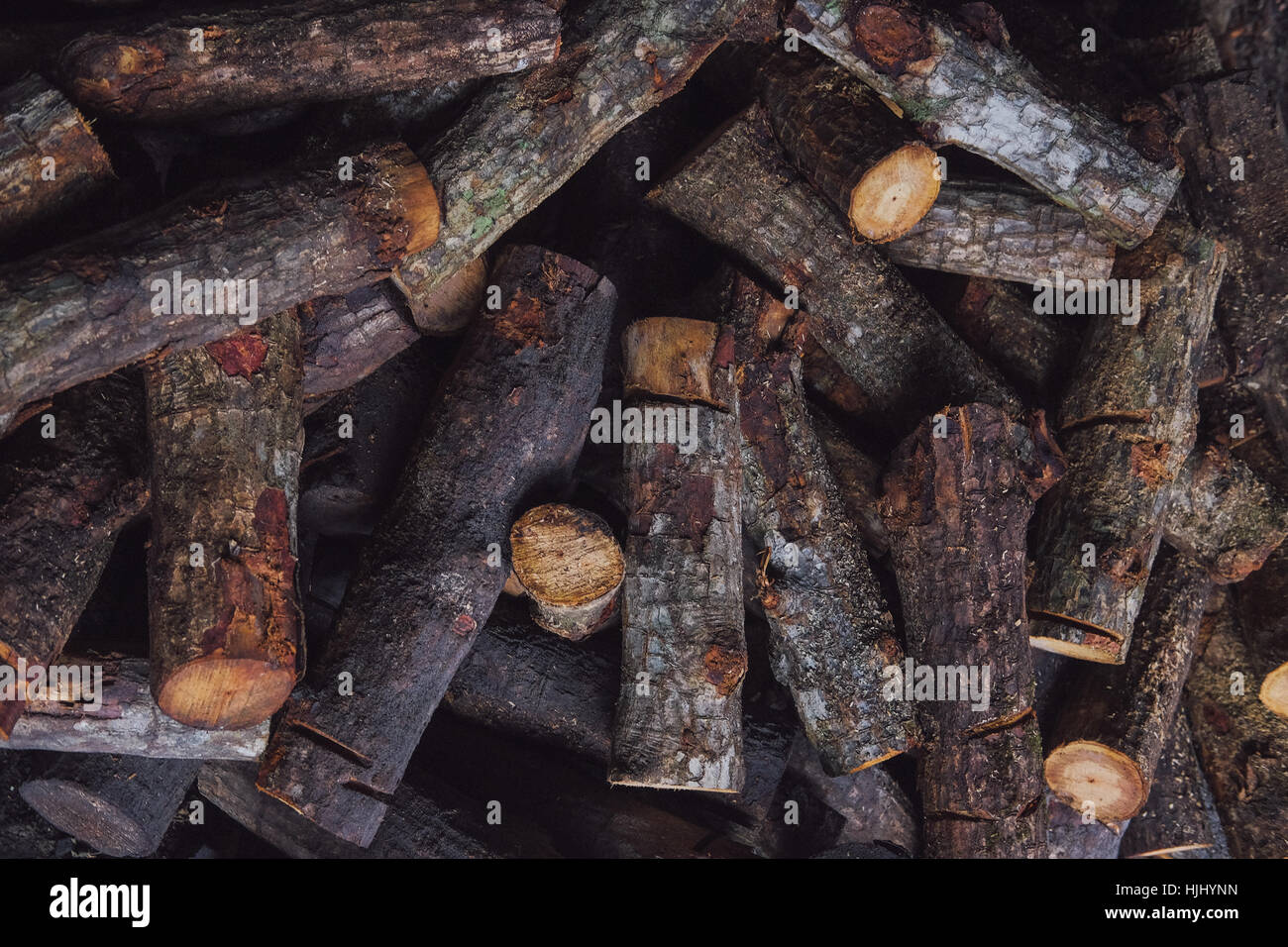 A pile of Mangrove wood for making Charcoal at Factory Stock Photo