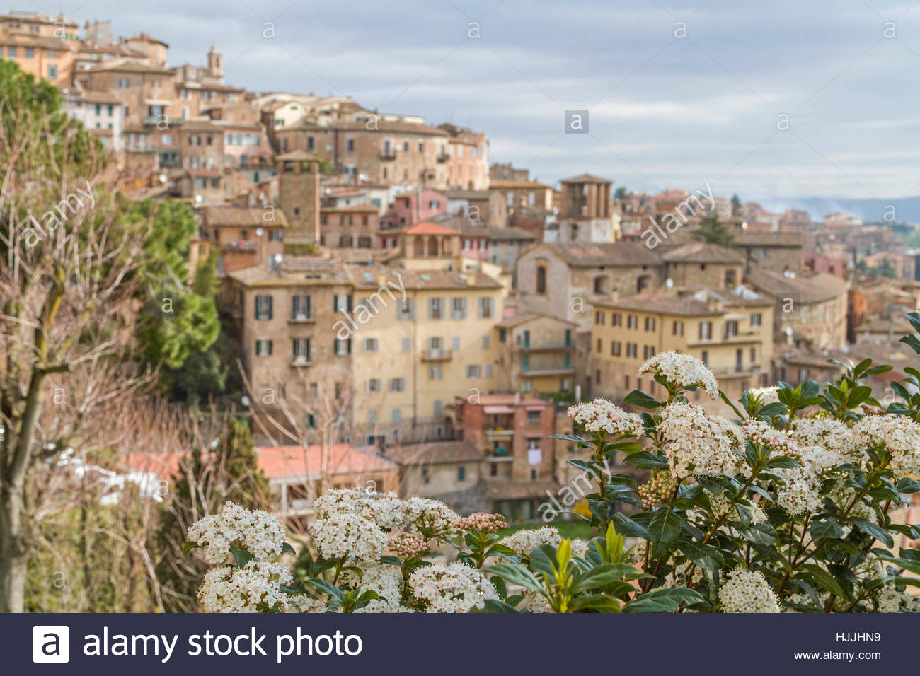 city, town, italy, historical, houses, city, town, centre, italy, umbrien, - Stock Image