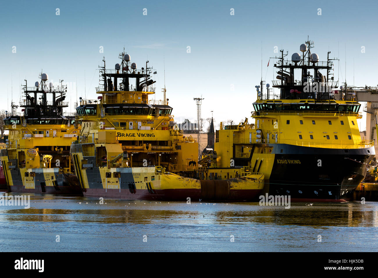Viking  yellow oil industry supply ships berthed Montrose Scotland UK - Stock Image