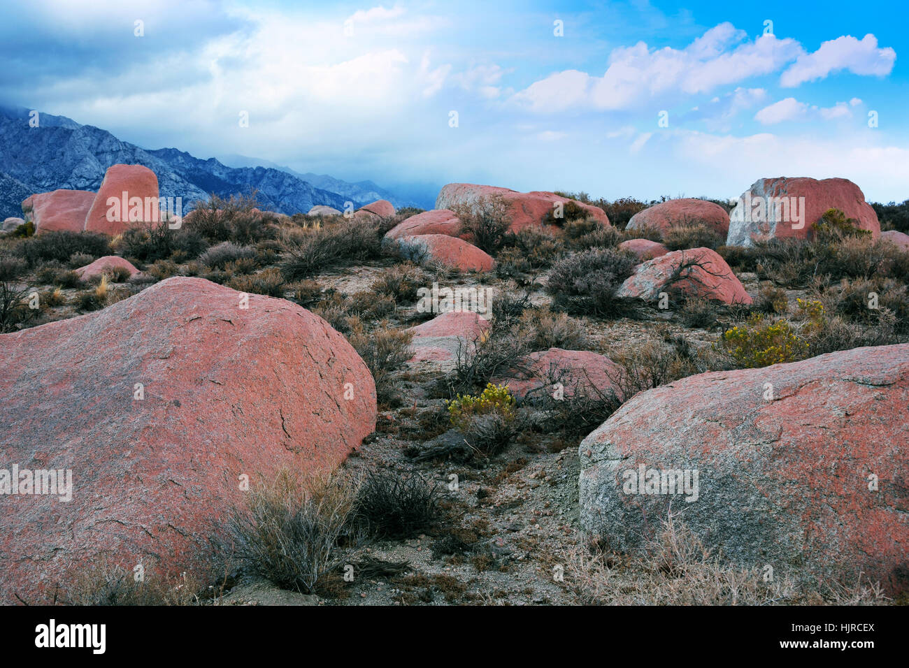 Sierra Nevada Mountains at Alabama Hills, close to the town of Lone Pine, California, USA. Rocks in foreground covered - Stock Image