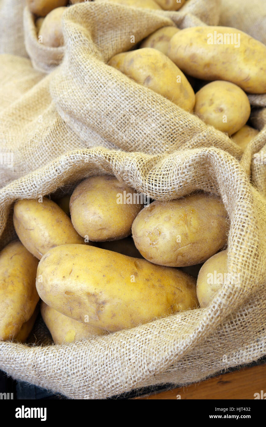Close-up of Potatoes in a burlap sack. - Stock Image