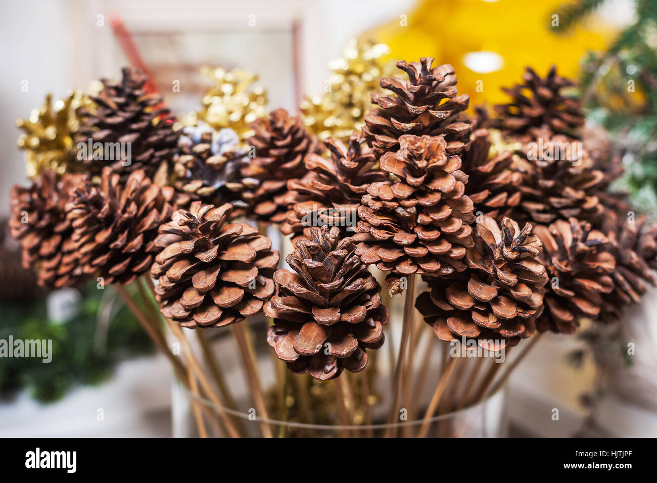 Buds On Sticks In A Glass Vase Interior Home Decor Stock Photo