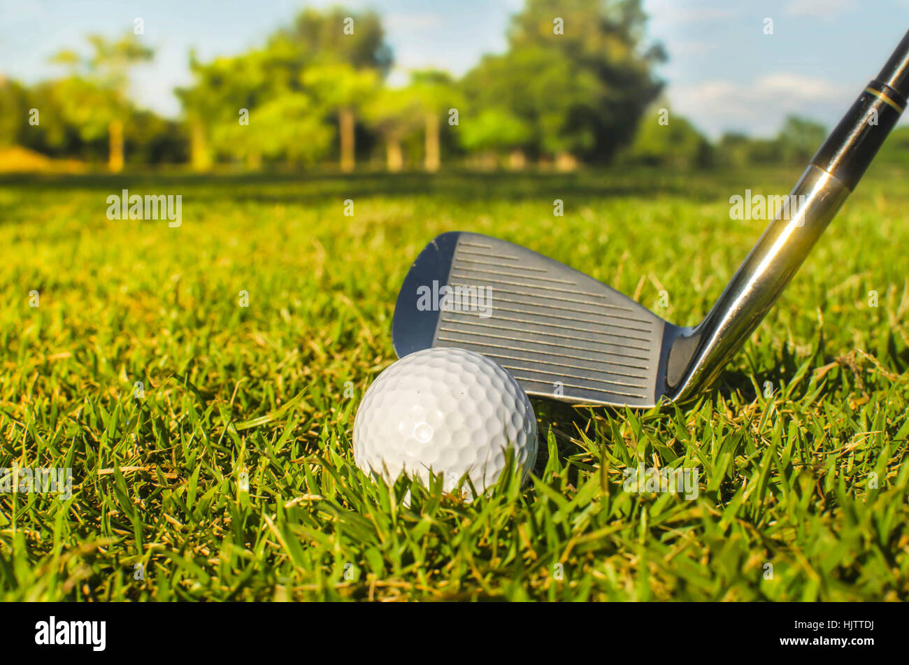 Golf club and ball in grass - Stock Image