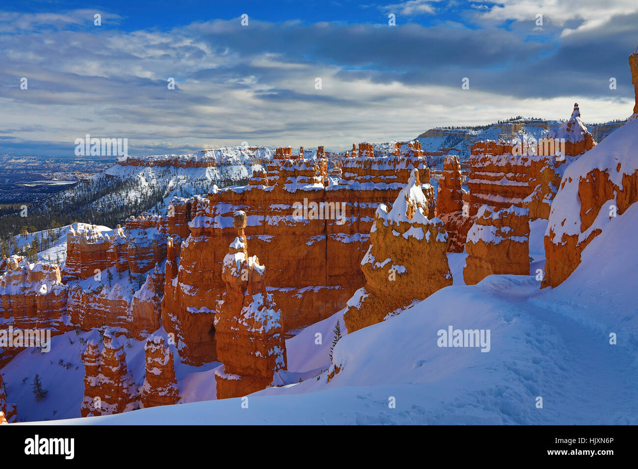The late afternoon sun splashes across snow-covered hoodoos along the Navajo Loop Trail, Bryce Canyon National Park - Stock Image