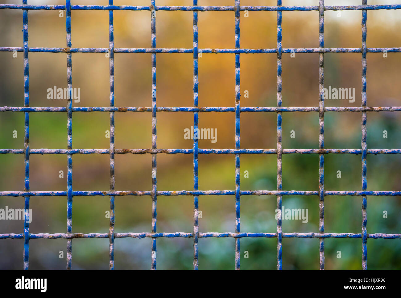 Steel and rusty grid fence with blurred background - Stock Image
