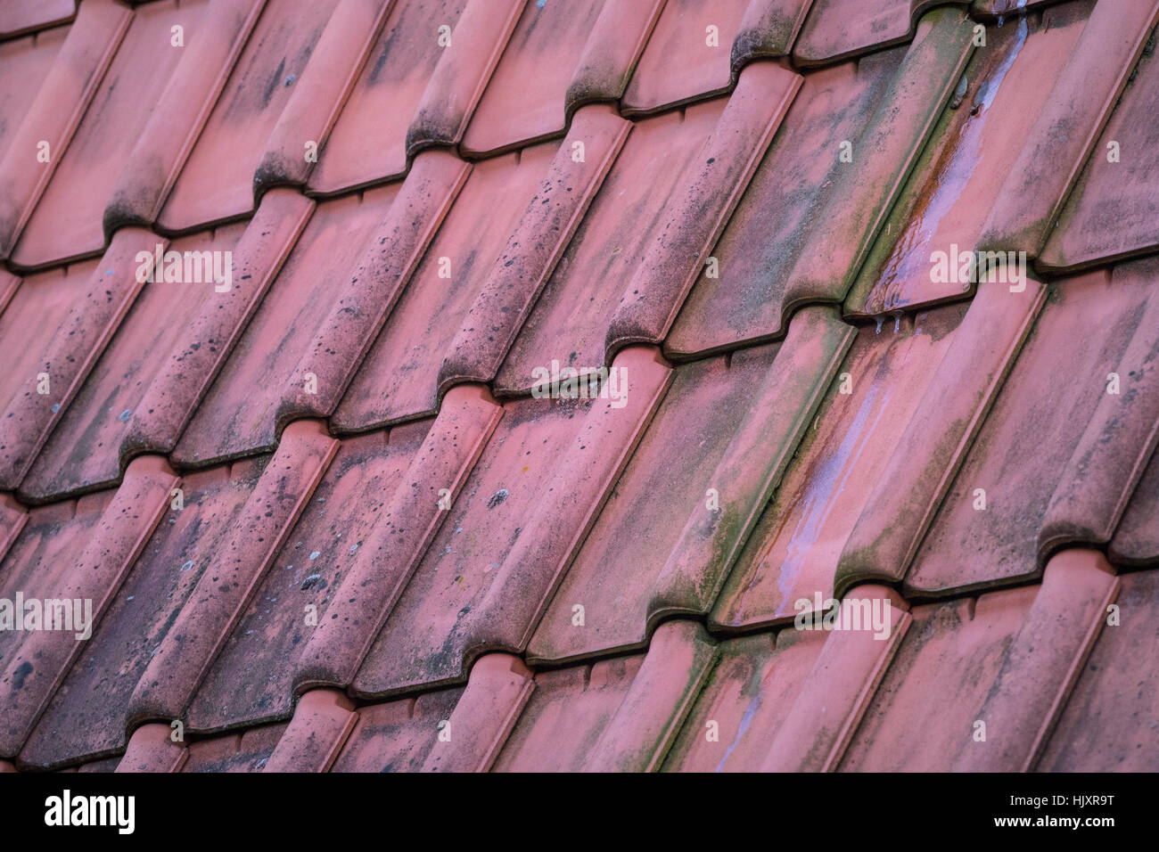 Violet tile roof with diagonal alignment - Stock Image