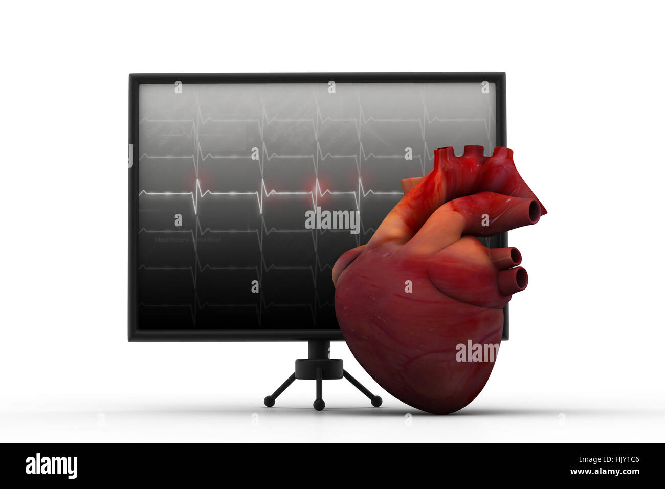 Human heart with ECG heart beat monitor	 - Stock Image