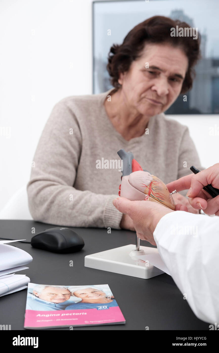Cardiologist explains the human heart to a senior female patient - Stock Image