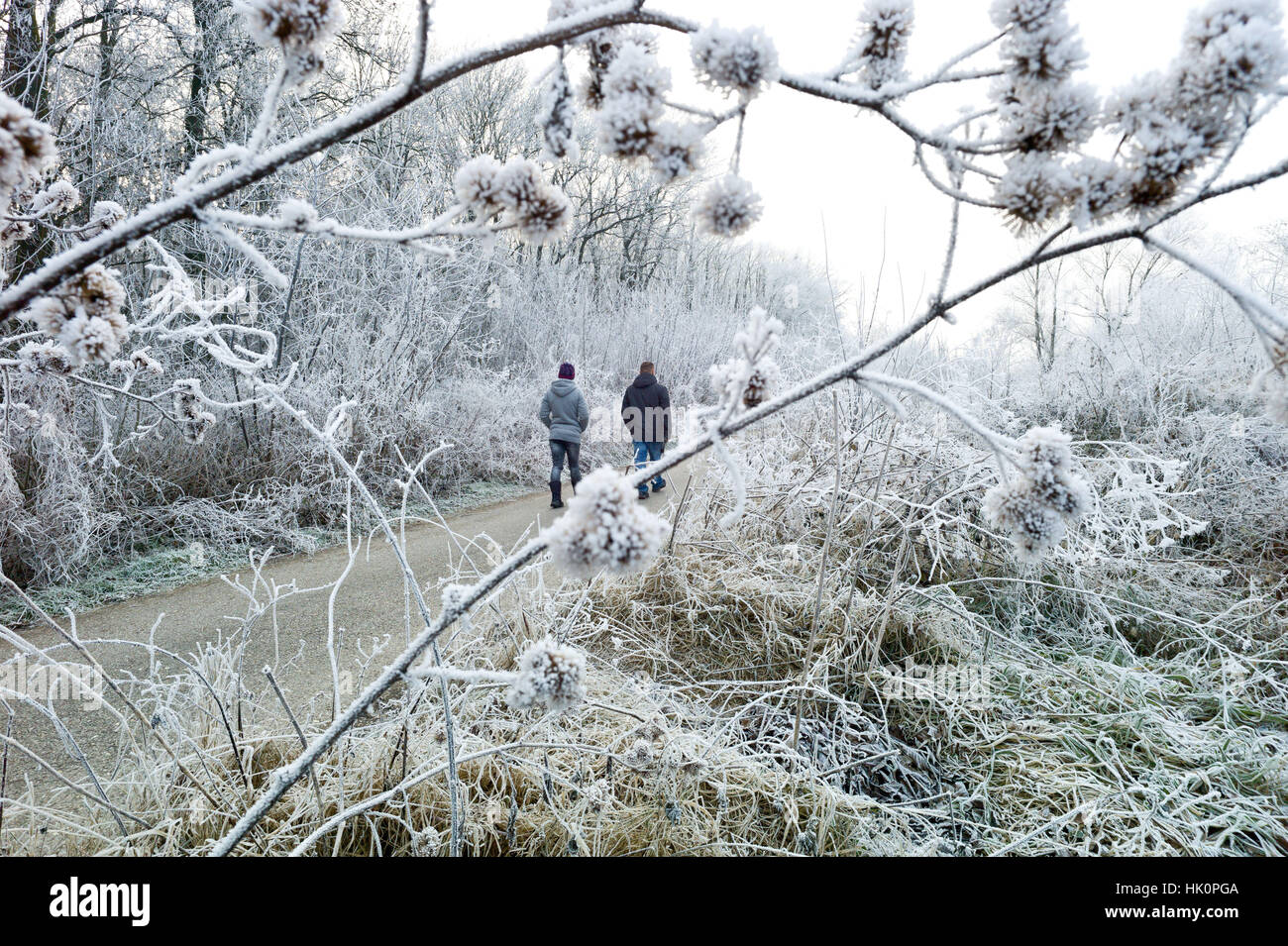 Walkers in Berek woodlands in sub zero temperature and hoar frost. Nove Zamky Slovakia.  Jan 2017 - Stock Image