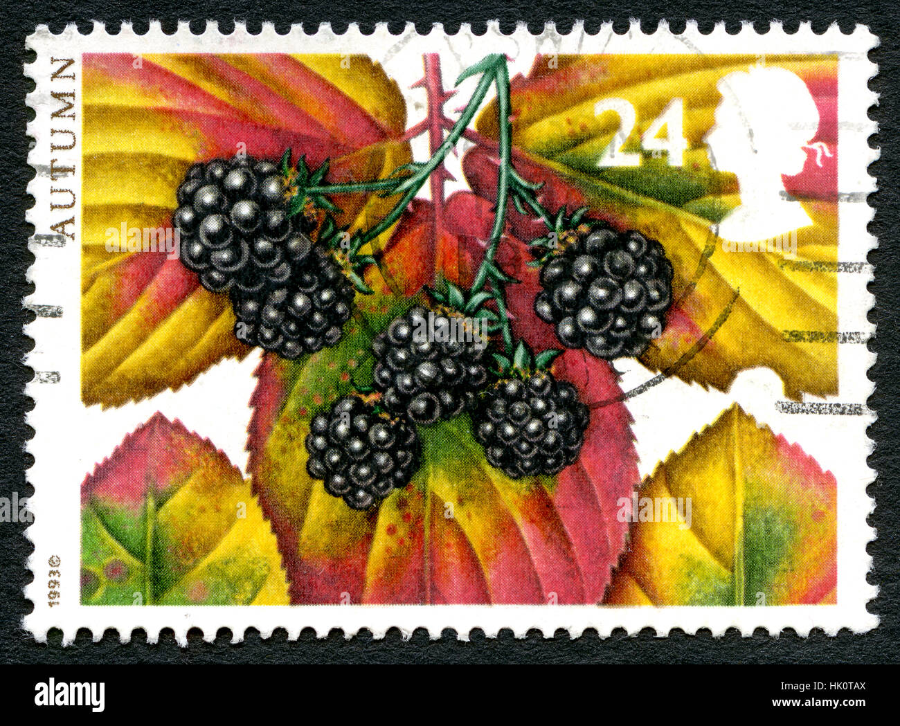 UK - CIRCA 1993: A postage stamp from the UK, celebrating the Autumn season with an illustration of Autumnal foliage. Stock Photo