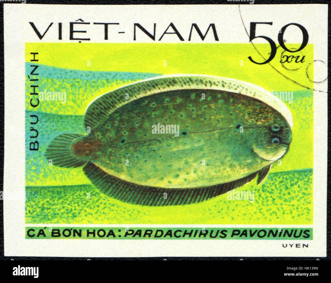 A postage stamp printed in VIETNAM shows a Fish Pardachirus pavoninus,  series 'Flatfish', circa 1982 - Stock Image