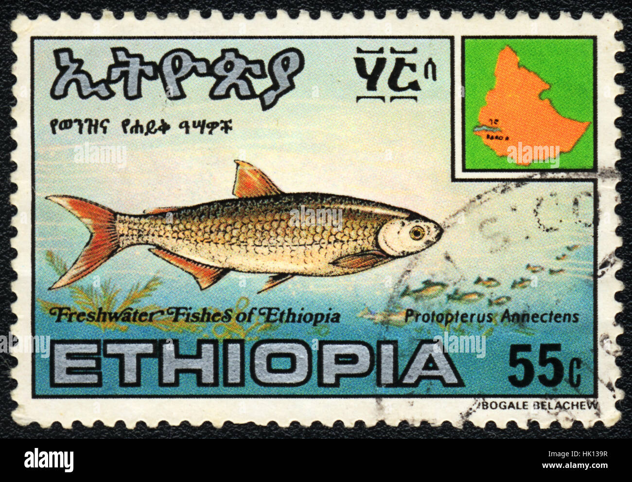 A postage stamp printed in Ethiopia shows a  Protopterus Annectens,  circa 1980 - Stock Image