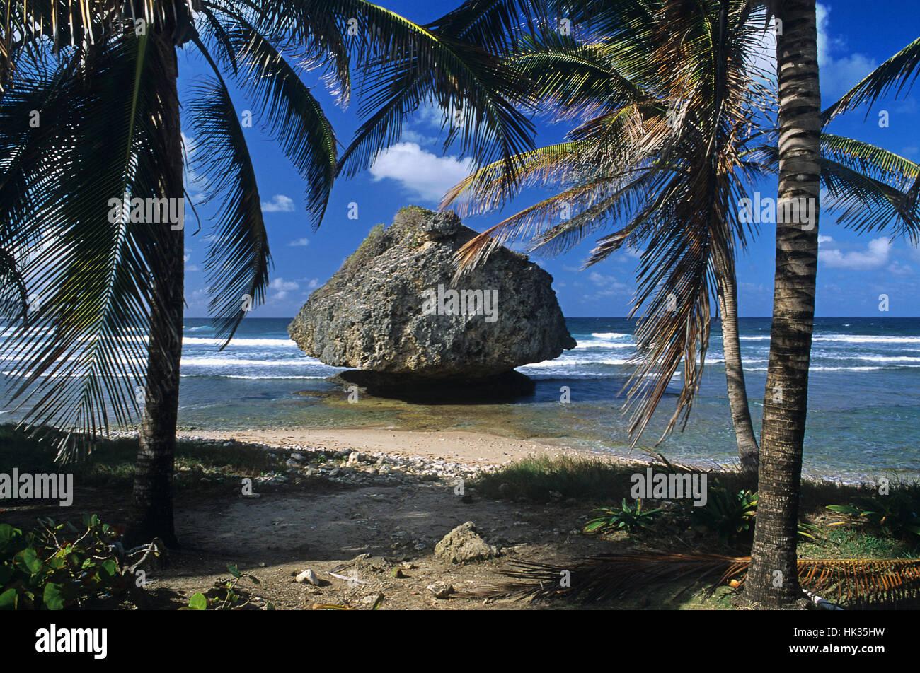 Dream-like Bathsheba beach, Barbados, Caribbean - Stock Image