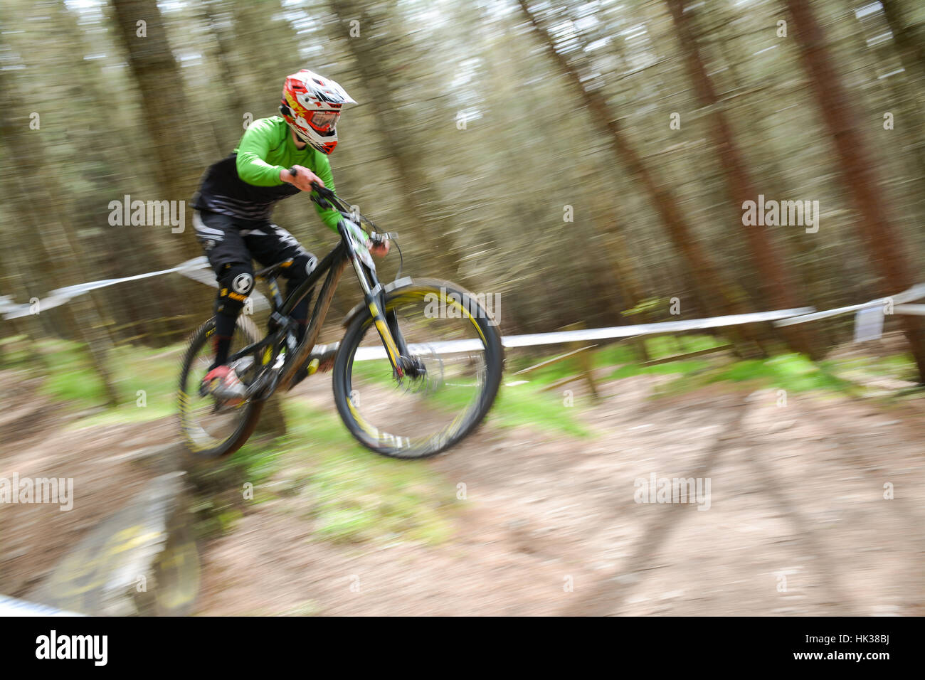 downhill mountain bike rider at Innerleithen, part of the 7stanes mountain biking centre in southern Scotland, UK - Stock Image