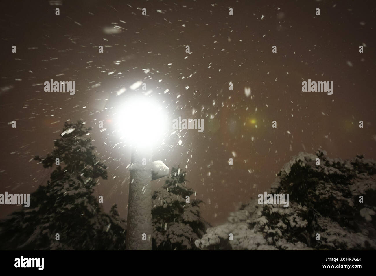 A low angle view of an illuminating street lamp in the park during strong snowfall. - Stock Image