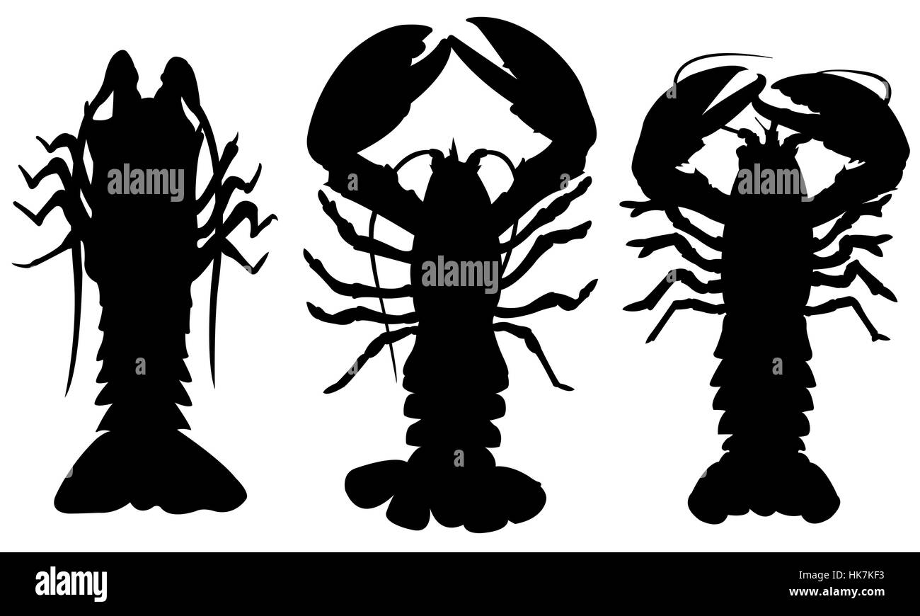 Illustration of different lobsters - Stock Image