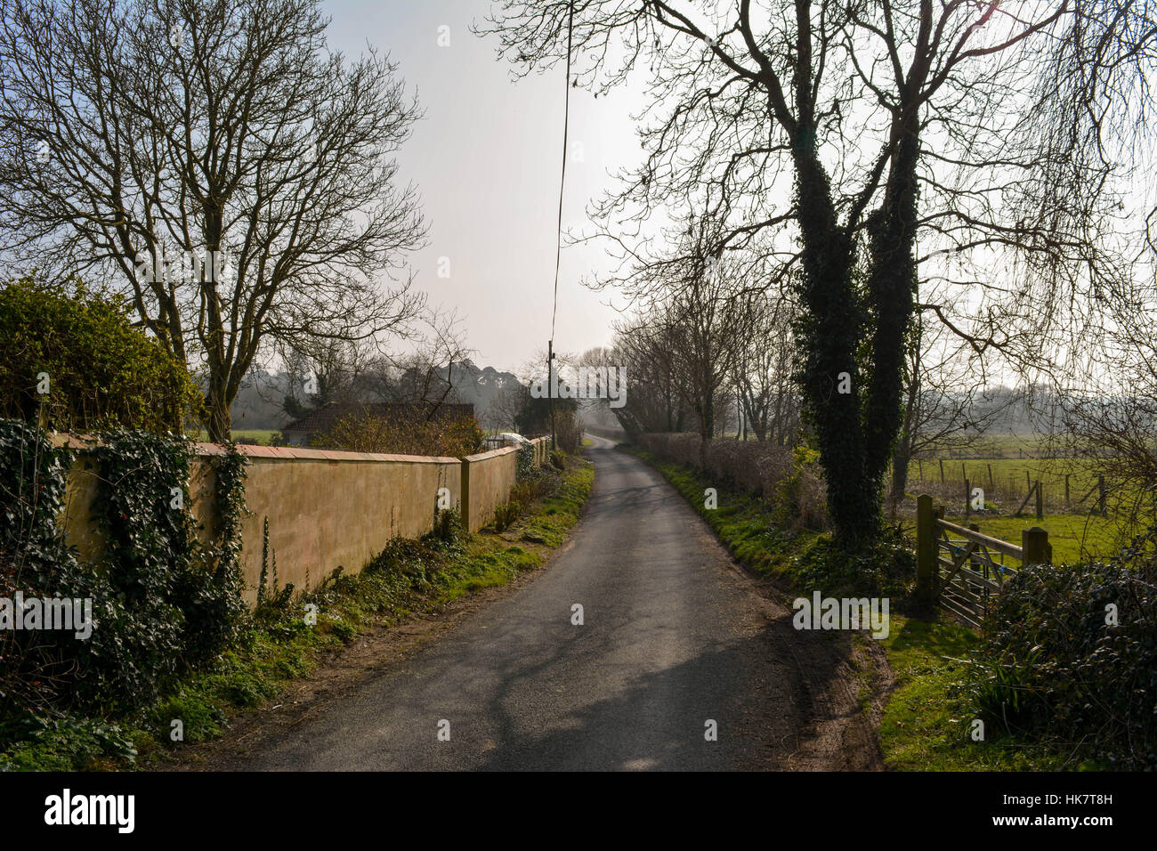 Southhover Lane, opposite the old Tolpuddle Martyrs Tree, West Dorset. Stock Photo