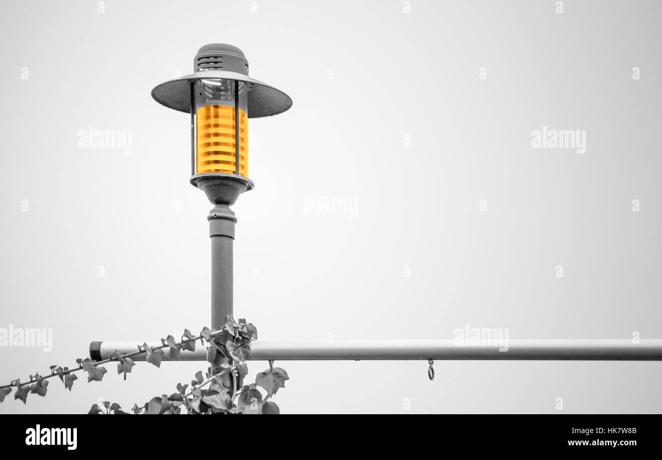 Yellow shining overgrown streetlamp - Stock Image